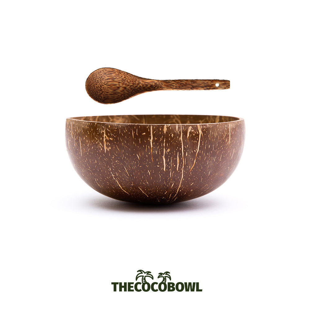 Coconut Bowl & Bamboo Spoon