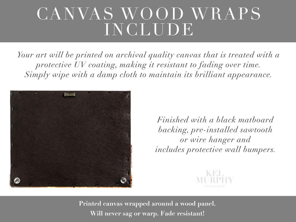 Canvas Wood Wraps Includes custom ultrasound and embryo art prints