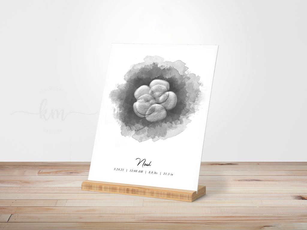 Custom watercolor IVF embryo art on gallery board with bamboo stand in nursery