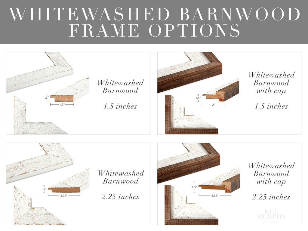 Whitewashed Barnwood Frames edge details for ultrasound and embryo watercolor art