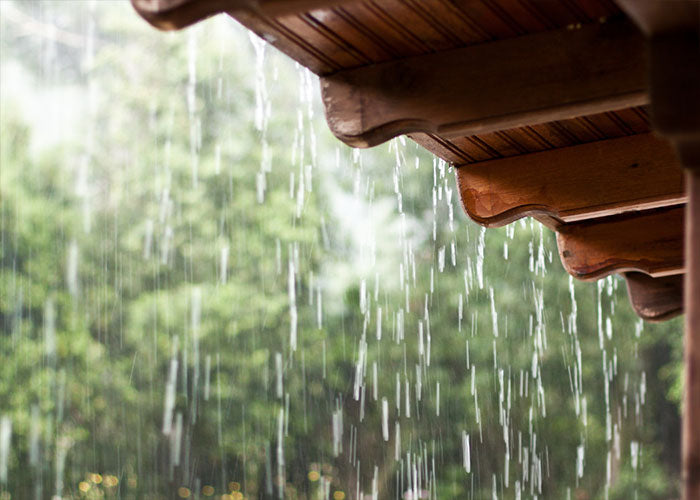Avoid Excess Water And Heat Exposure