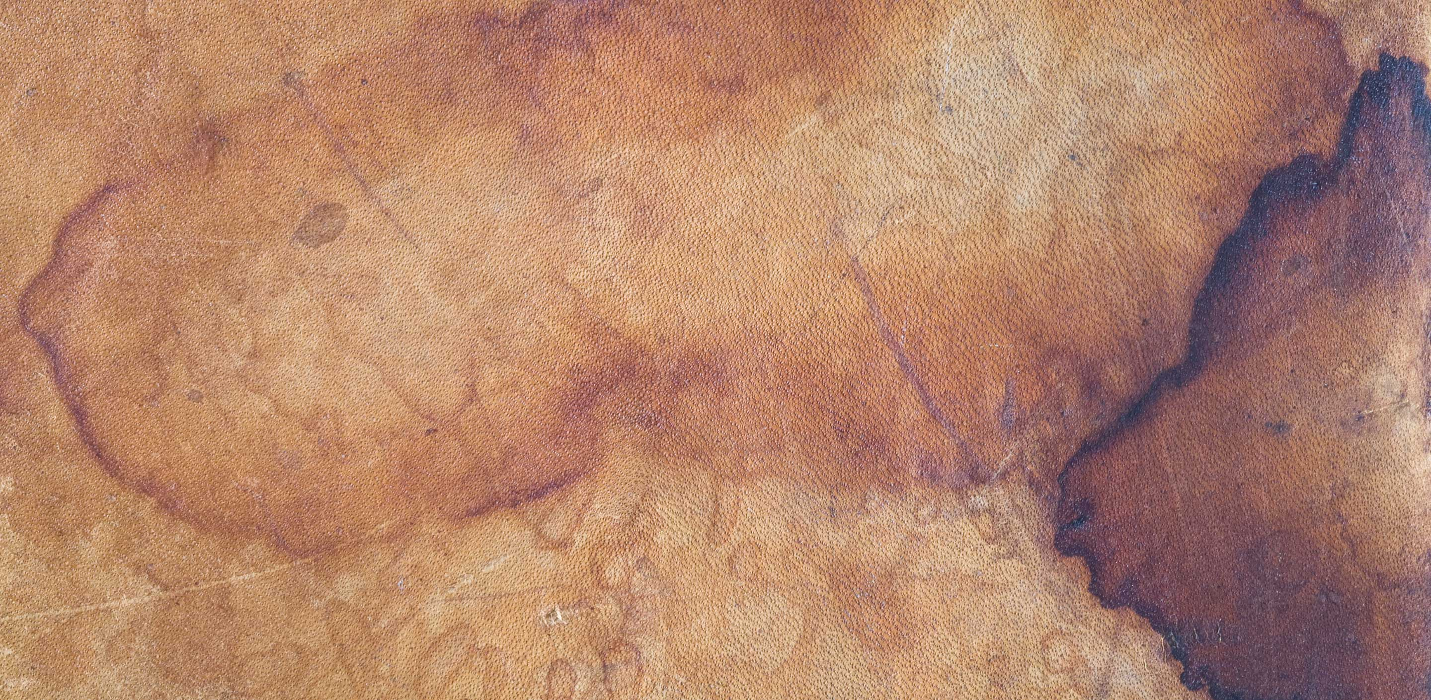 How To Remove Ink From Leather?