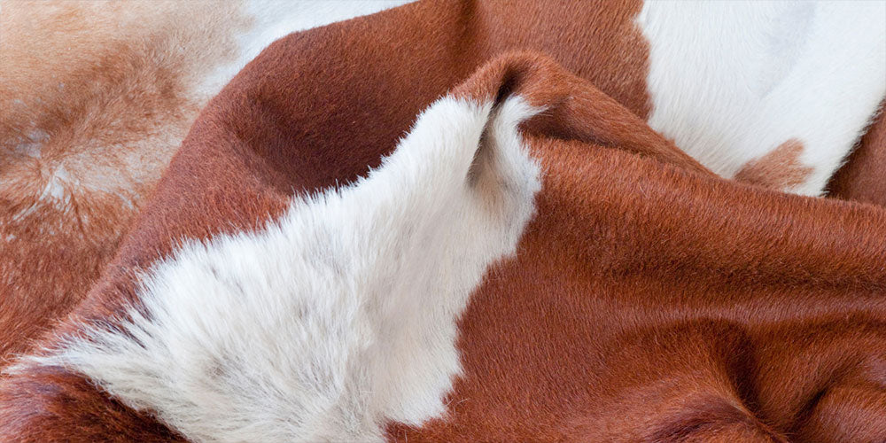 What Animal Is Italian Leather Made From?