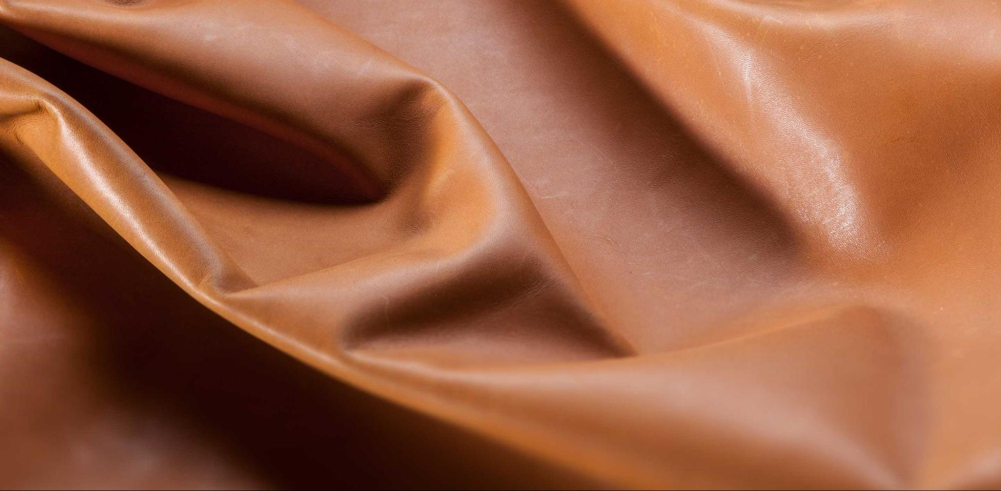 What Is Protein Leather?
