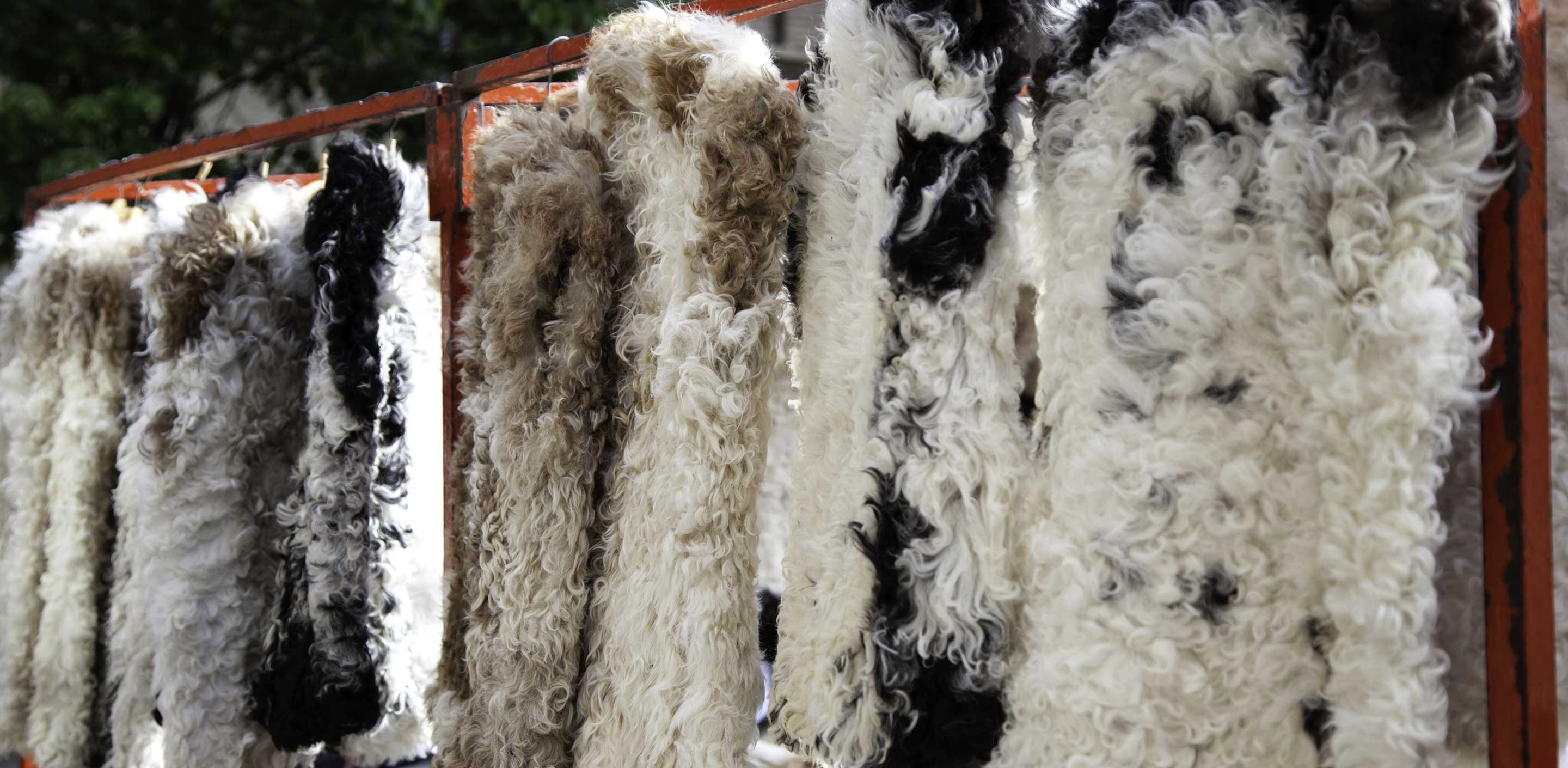 What is Sheep Leather?