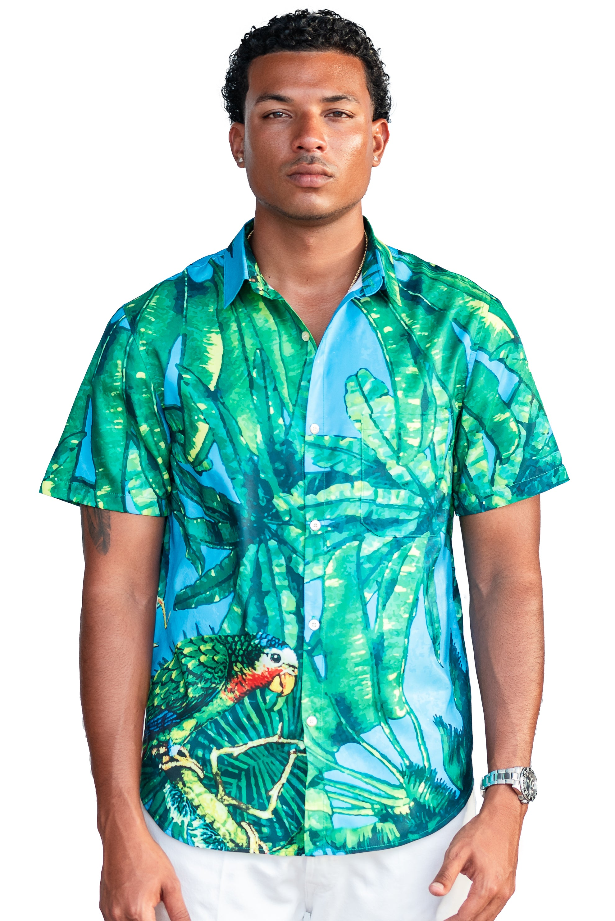 The Parrotti Button Up