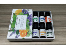 Load image into Gallery viewer, Anion Essential Oils Gift Set of 6