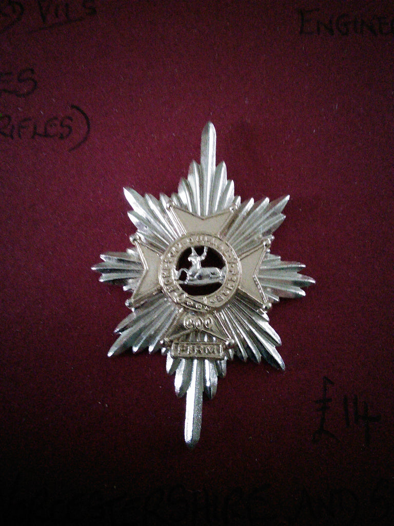 Original anodised cap badge The Worcestershire and Sherwood Foresters Regiment (29th/45th Foot)