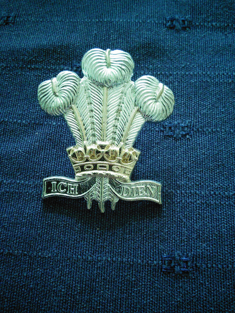The Royal Regiment of Wales (24th/41st Foot) sta-brite cap badge