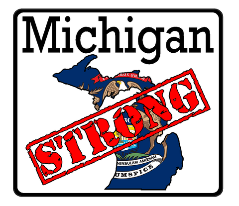 Michigan State (K23) Strong Flag Vinyl Decal Sticker Car/Truck Laptop/Netbook Window