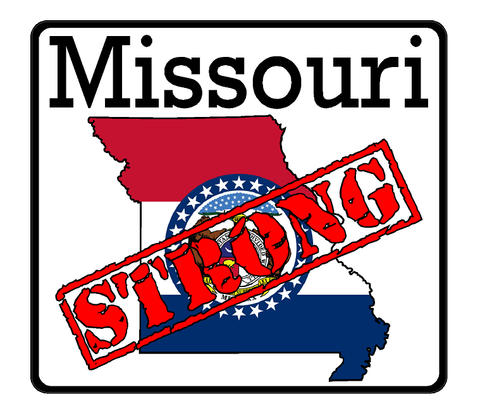 Missouri State (K26) Strong Flag Vinyl Decal Sticker Car/Truck Laptop/Netbook Window