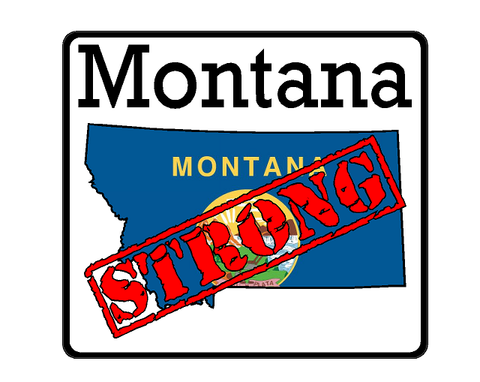 Montana State (K27) Strong Flag Vinyl Decal Sticker Car/Truck Laptop/Netbook Window