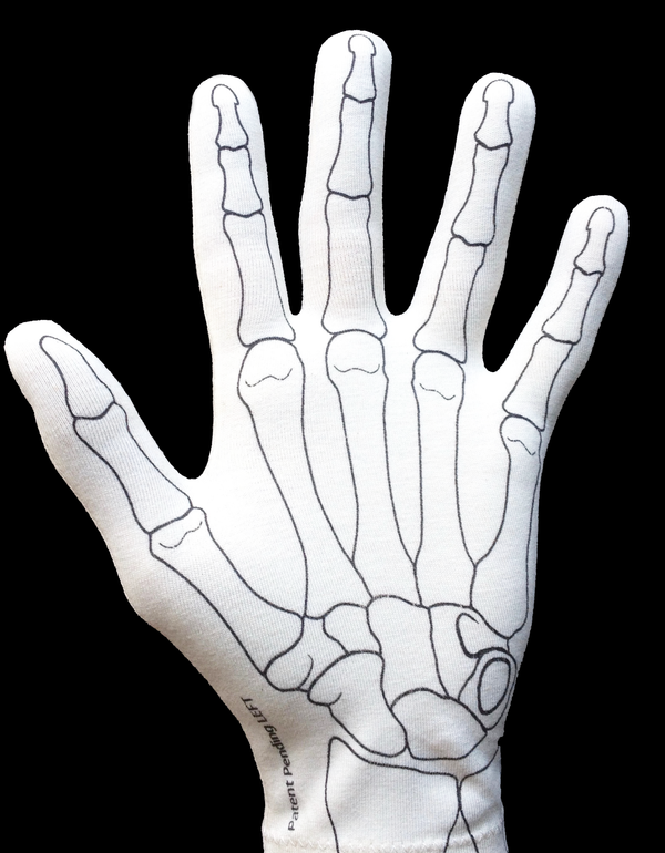 Blank anatomy glove before hand structures have been drawn on
