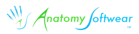 Anatomy Softwear International Inc.