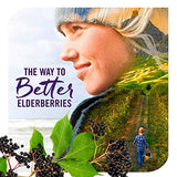 Nature's Way Sambucus NightTime Standardized Elderberry Syrup + Melatonin & Herbs for Restful Sleep, 4 fl. oz. (Packaging May Vary)