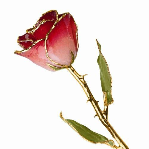 LAQUER DIPPED 24K GOLD TRIMMED PINK & BURGANDY ROSE