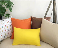 Load image into Gallery viewer, Toss Pillows - Brown