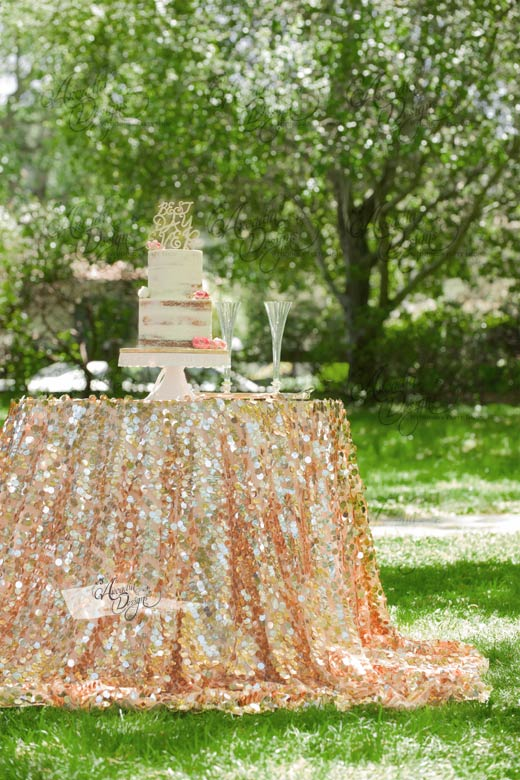 Dangling Coin Sequin Rose Gold Tablecloth