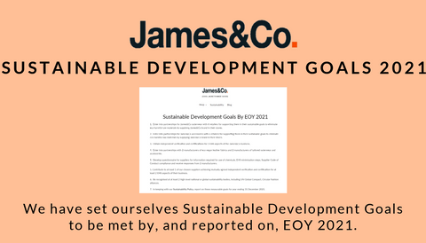 James&Co sustainable development goals by 2021