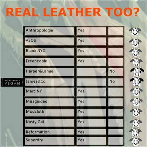 chart showing brands selling real leather as well as vegan leather