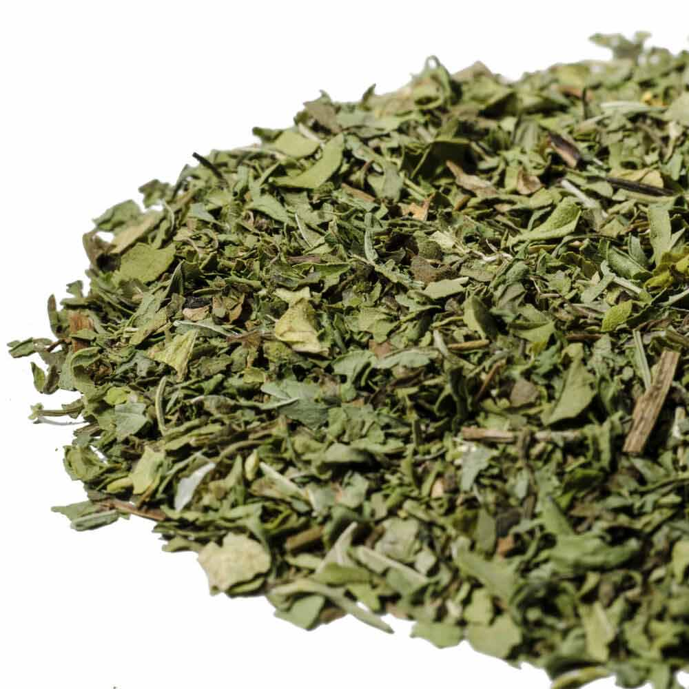 spearmint herbal tea infiusion