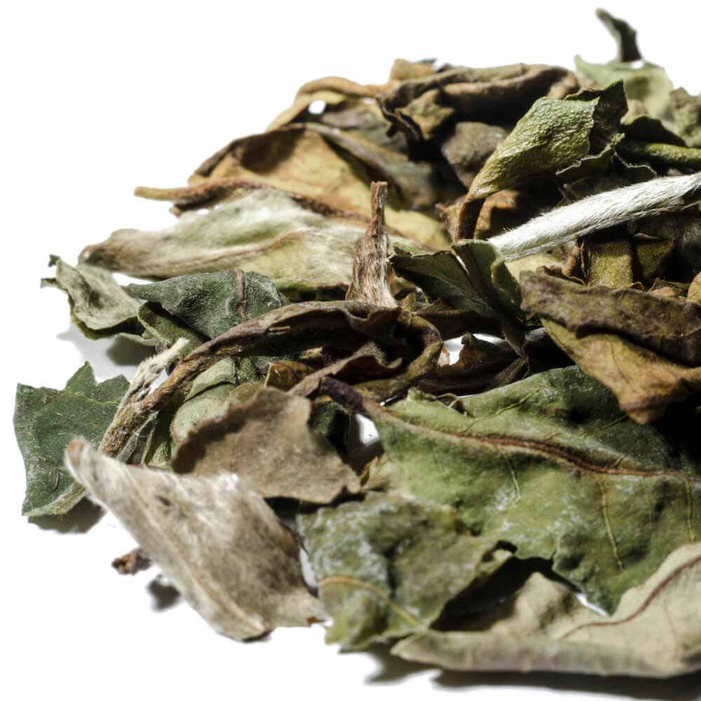 White Peony Loose Leaf White Chinese Tea