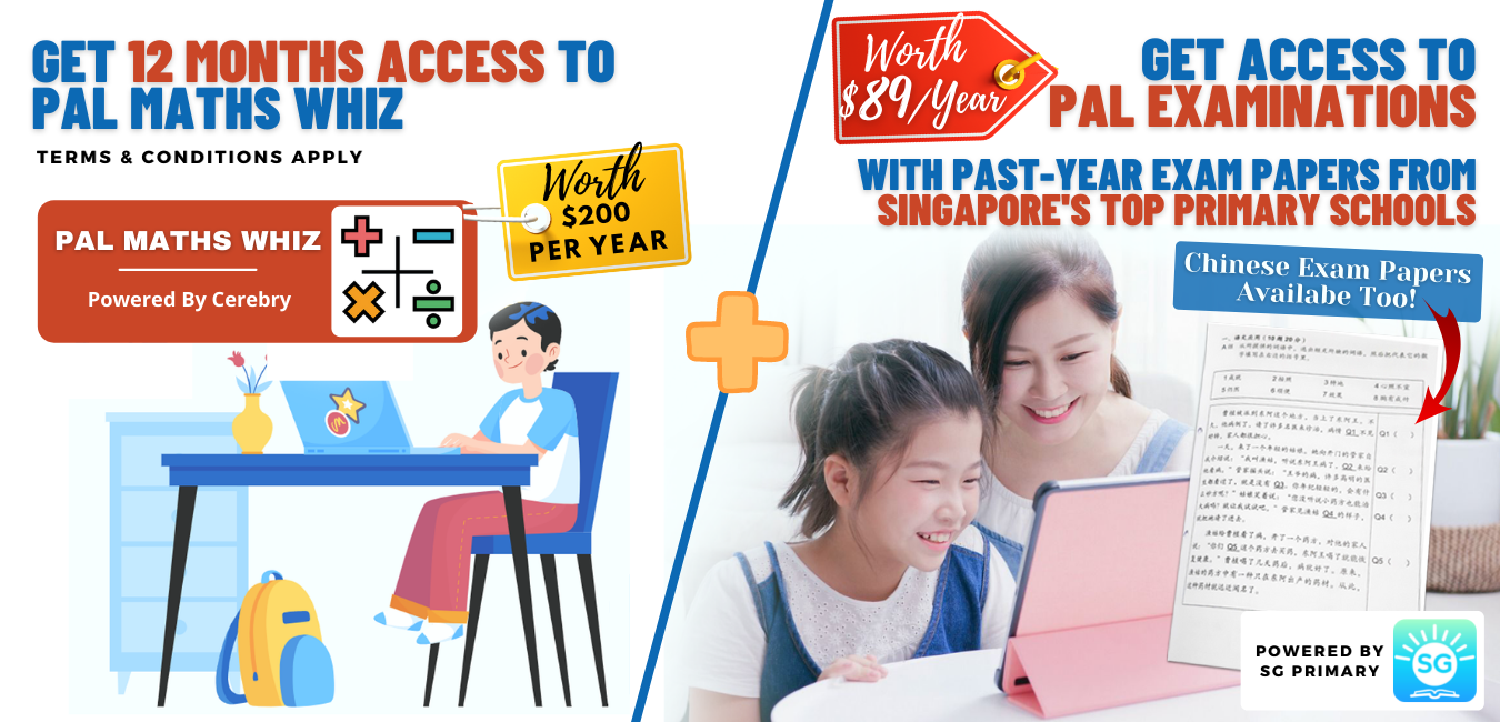12 Months Access To PAL Maths Whiz And PAL Examinations