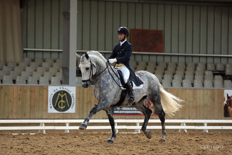 Rob Waine Dressage