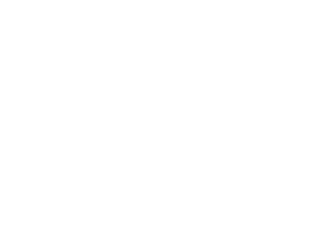 The Simple Equine