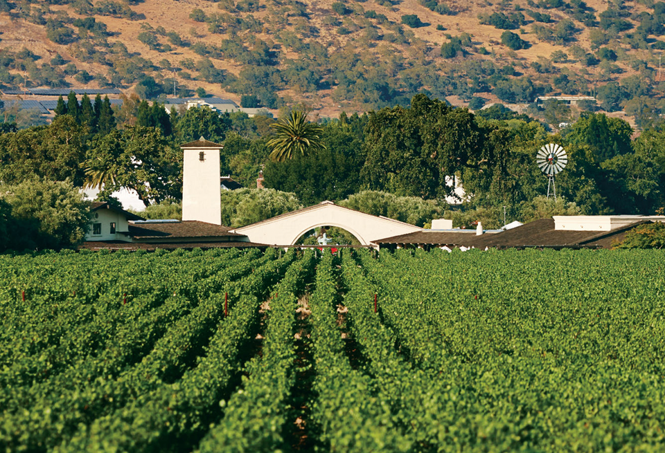 The tower and iconic arch of Robert Mondavi Winery peek over the tops of green vineyards that stretch across the valley.