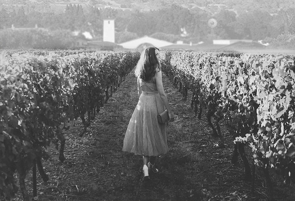 A woman with long hair walks through the vineyard toward Robert Mondavi Winery.
