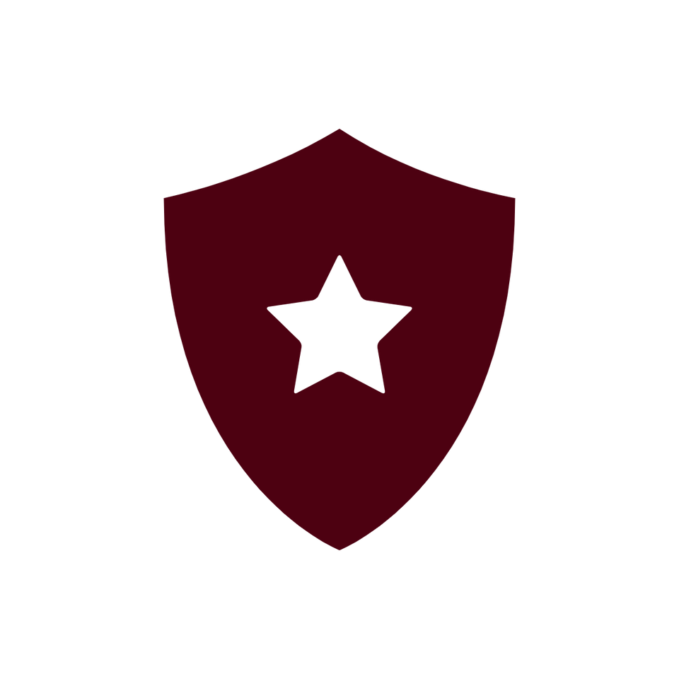 A shield shape with a white star in the middle of it.