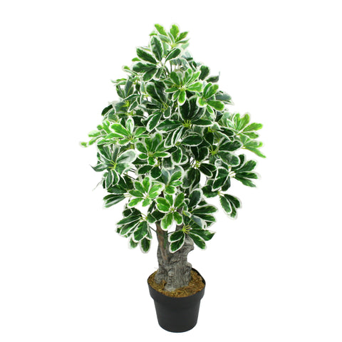 Artificial Schefflera Variegated Plant