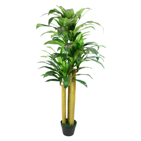 Artificial Dracaena Tree 5 ft