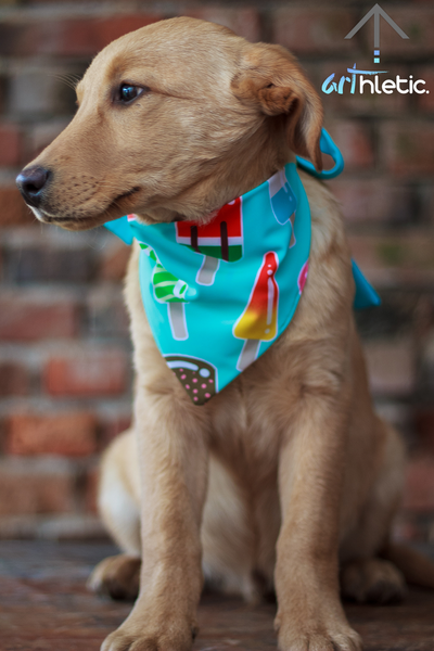 Mint Popsicles Bandana