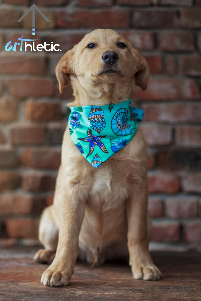 Seashell Bandana by arthletic-wear.myshopify.com I Pet bandana I