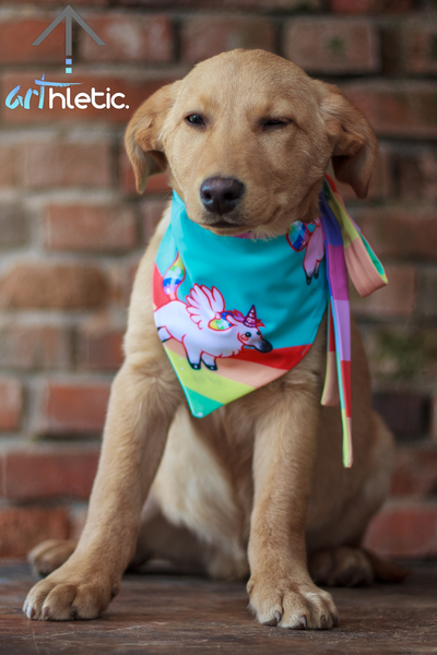Rainbows & Unicorns Bandana