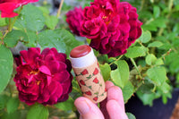 Red Rose Gloss Stick