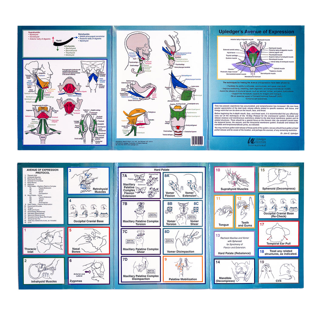 Avenue of Expression Trifold Reference Chart