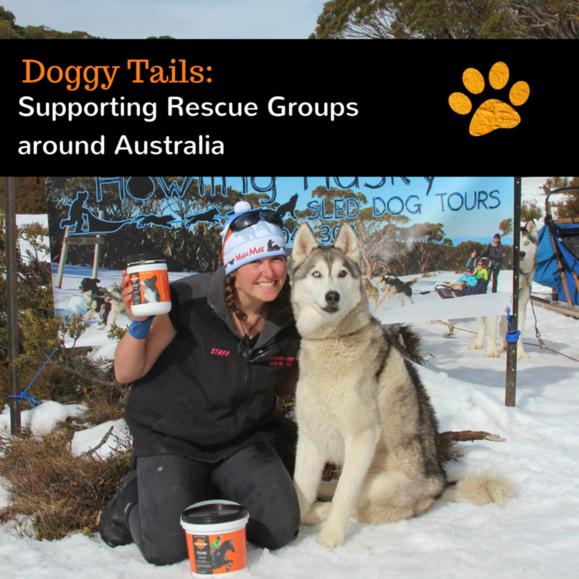 Supporting the work of Rescue Groups around Australia one paw at a time
