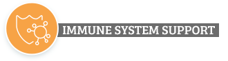 Six Reasons Why? Immune System Support