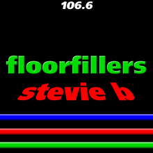 Load image into Gallery viewer, Stevie B Floorfillers
