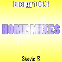 Load image into Gallery viewer, Stevie B Home Mixes