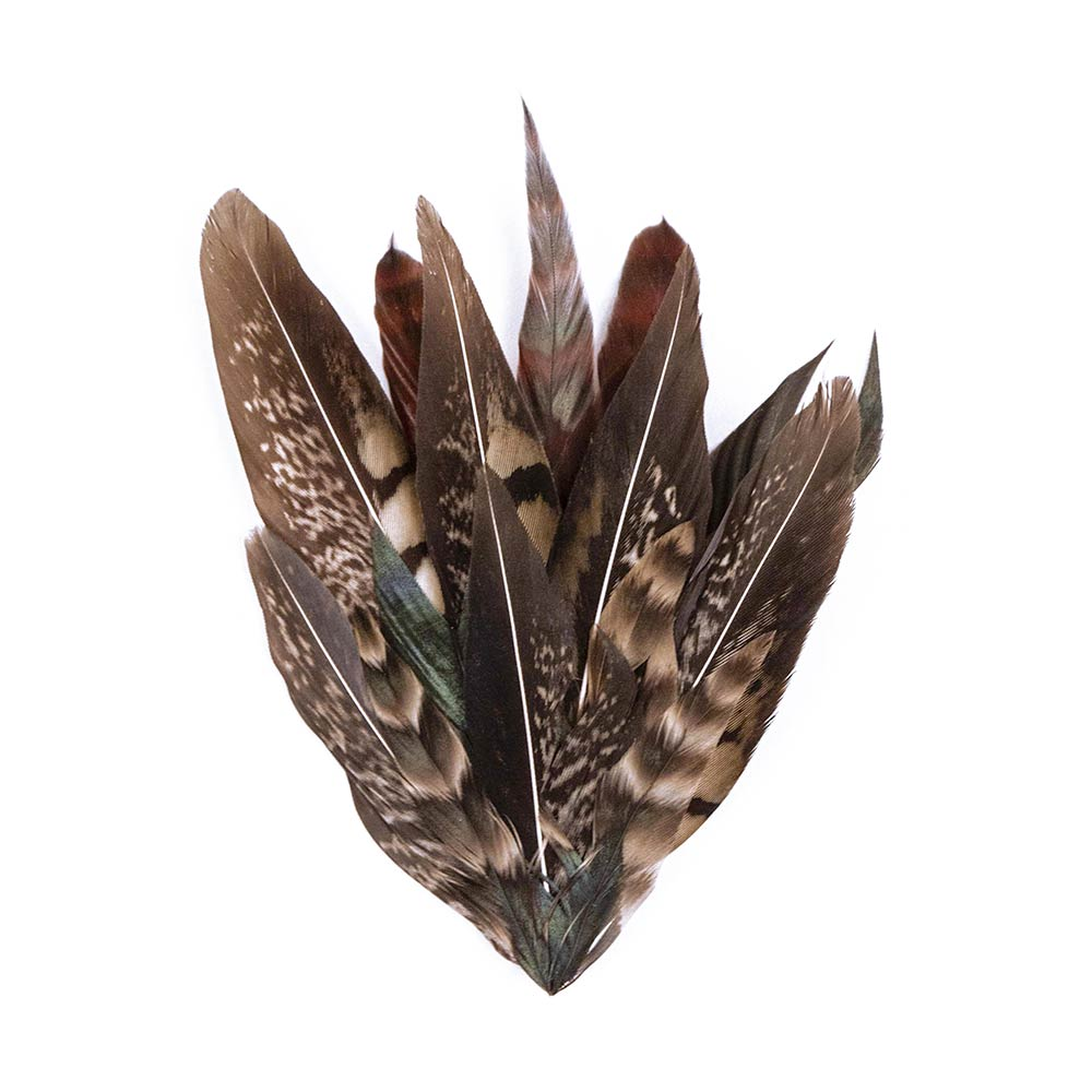 Dyan Feather Brooch - Nan'àö√ù Firenze. Add a refined touch to your outfit with this colorful feather pin. Natural pattern and bright colours. Featuring a bar pin fastening.