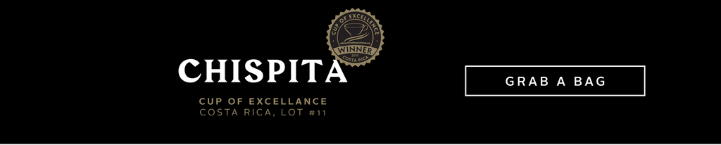 Chispita, Cup Of Excellence