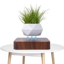 Load image into Gallery viewer, Levitating Plant Pots/ Magnetic Suspension Pot - Gardener Lenn