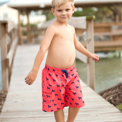 Dog Days Boys' Swim Trunks-Swim Wear-PinkandLulu.com