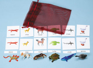 Classification Science: Vertebrates 3-Part Cards with Objects