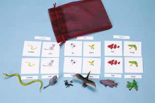 Land/Air/Water: Climb, Fly, Swim 3-Part Cards With Objects