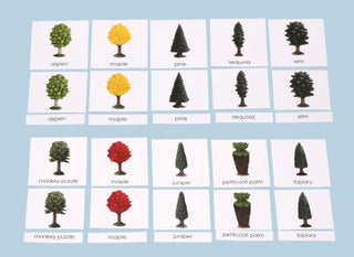 Trees Laminated 3-Part Cards Only